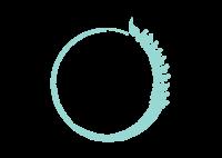 LifeCycle Quiropráctica